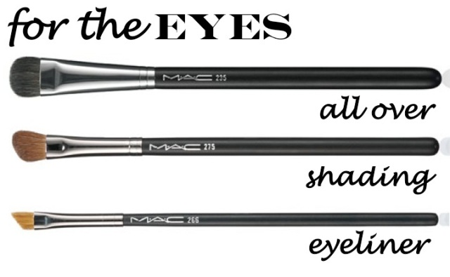 makeup brushes for the eyes by beauty and sass