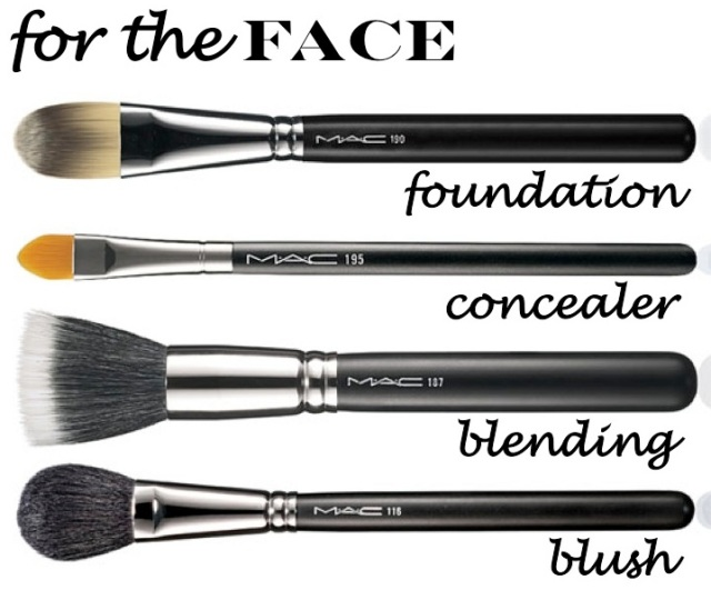 makeup brushes for the face by beauty and sass