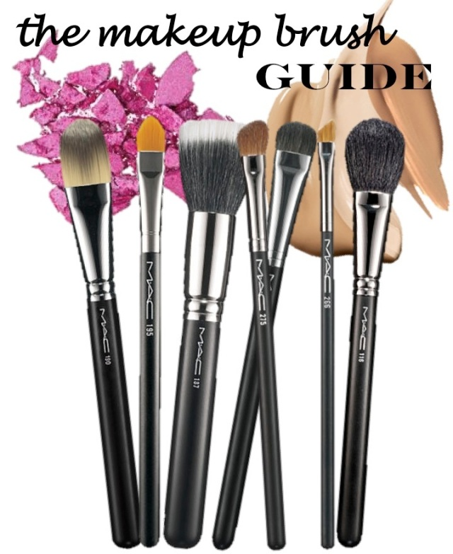 the makeup brush guide by beauty and sass